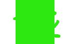 Green Spider Icon